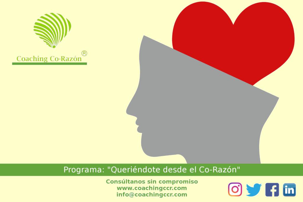 consulta2-1024x6832