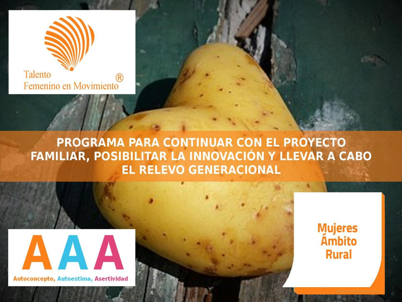 programas-0152