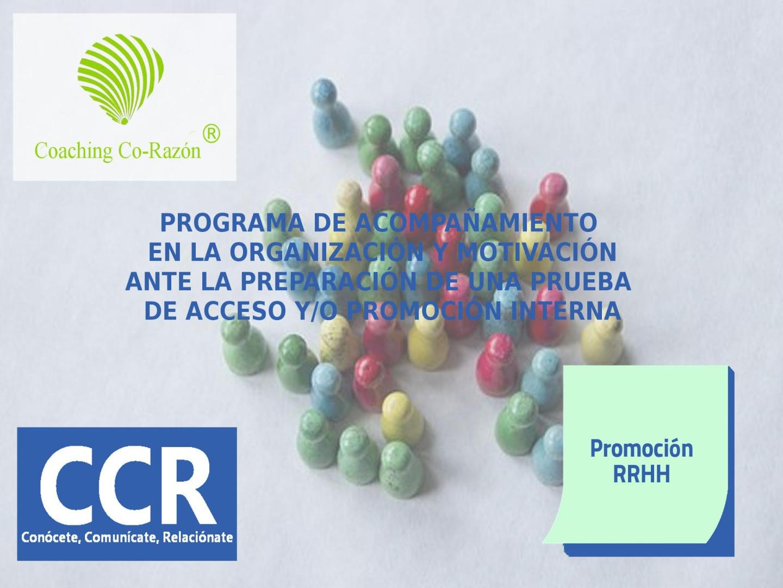 programas-018