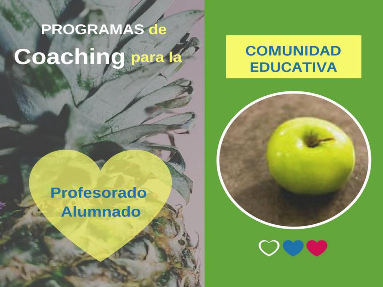programas-011