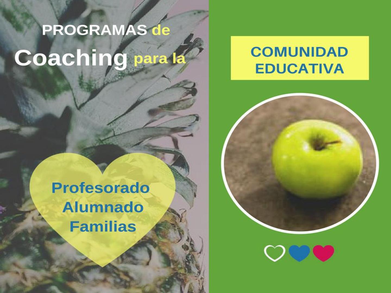 programas-017